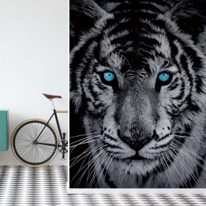 Black And White Tiger Blue Eyes Photo Wallpaper Wall Mural