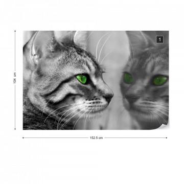 Cat Kitten Photo Wallpaper Wall Mural