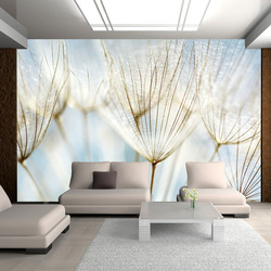 Fototapet - Abstract dandelion flower background