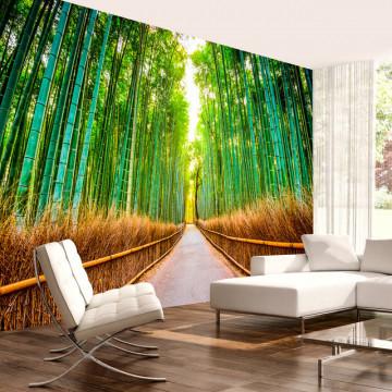 Fototapet - Bamboo Forest