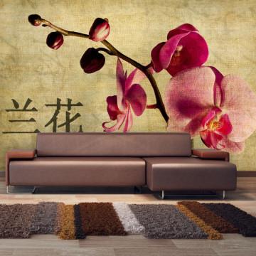 Fototapet - Japanese orchid