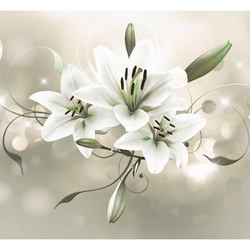 Fototapet - Lily - Flower of Masters