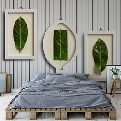 Framed Nature Photo Wallpaper Mural