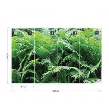 Green Ferns Forest Photo Wallpaper Wall Mural