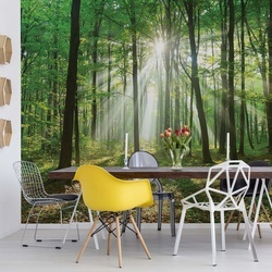 Green Forest Photo Wallpaper Wall Mural