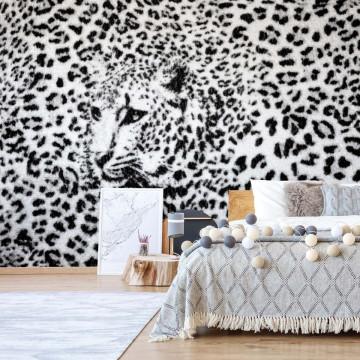 Leopard Photo Wallpaper Wall Mural
