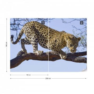 Leopard Tree Photo Wallpaper Wall Mural
