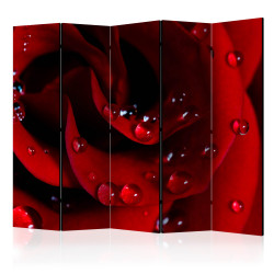 Paravan - Red rose with water drops II [Room Dividers]