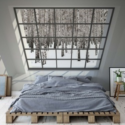 Penthouse Window Birch Forest View