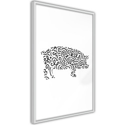 Poster - Curly Pig