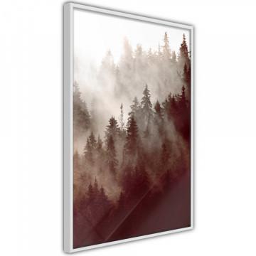 Poster - Forest Fog