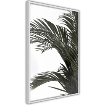 Poster - Jungle Scent