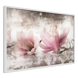 Poster - Picked Magnolias