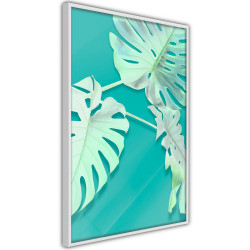 Poster - Teal Monstera
