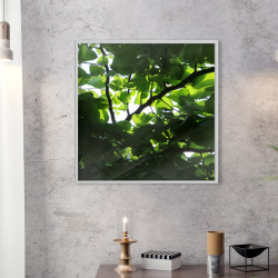 Poster - Under Cover of Leaves
