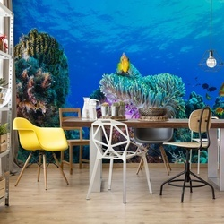 Sea Life Photo Wallpaper Mural