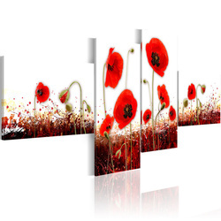 Tablou - A field of poppies on a white background