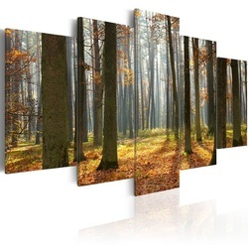 Tablou - A nice forest landscape