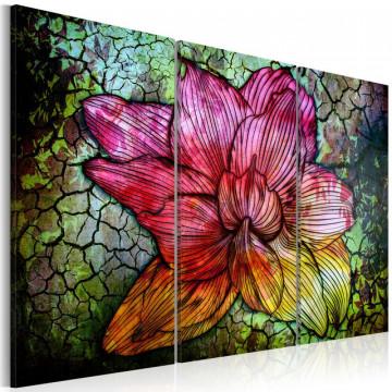 Tablou - A rainbow-hued abstract flower
