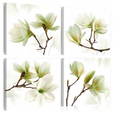 Tablou - Admiration of Magnolia