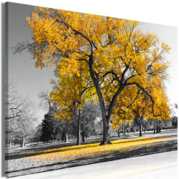 Tablou - Autumn in the Park (1 Part) Wide Gold