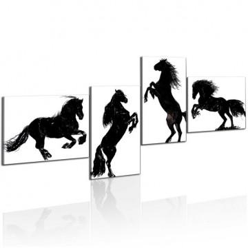 Tablou - Black stallion