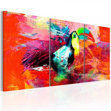 Tablou - Colourful Toucan