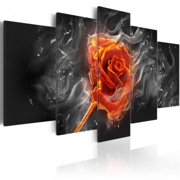 Tablou - Fiery Rose