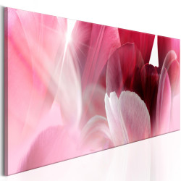 Tablou - Flowers: Pink Tulips