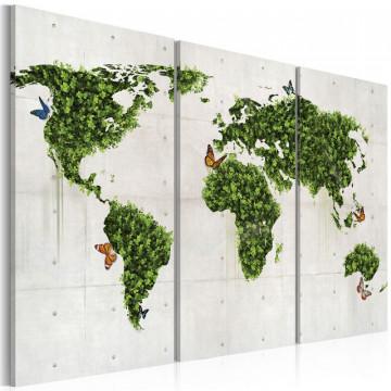 Tablou - Green land of butterflies - triptych