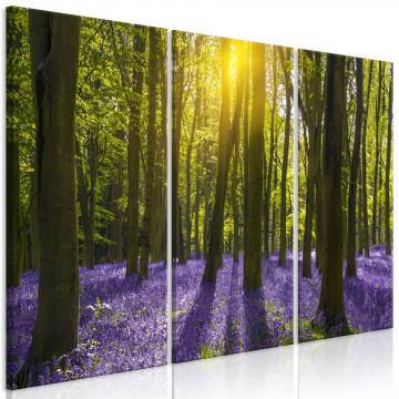 Tablou - Hyacinth Field (3 Parts)