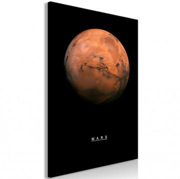Tablou - Mars (1 Part) Vertical