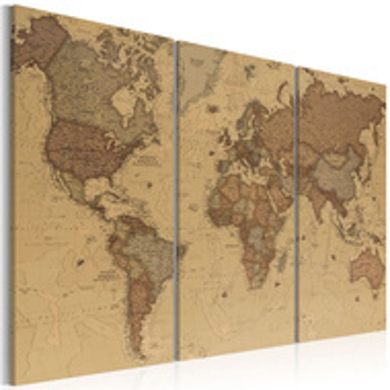Tablou - Stylish World Map