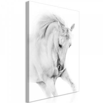 Tablou - White Horse (1 Part) Vertical