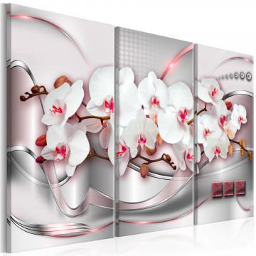 Tablou - Wonderful Orchids I