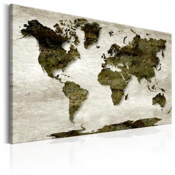 Tablou - World Map: Green Planet