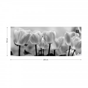 Tulips Flowers Black And White Photo Wallpaper Wall Mural