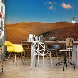 Tuscan Fields Photo Wallpaper Mural