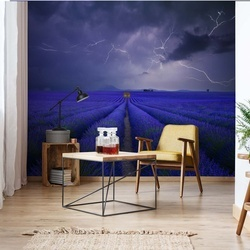 Wetter Im Lavendelfeld Photo Wallpaper Mural