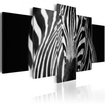 Tablou - Zebra look