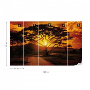 African Sunrise Photo Wallpaper Wall Mural