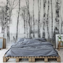 Black And White Photo Wallpaper Mural