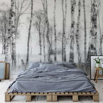 Black And White Photo Wallpaper Mural