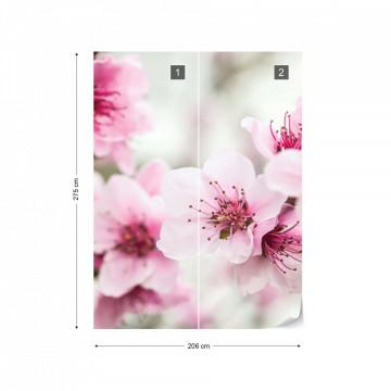 Cherry Blossom Flowers Photo Wallpaper Wall Mural