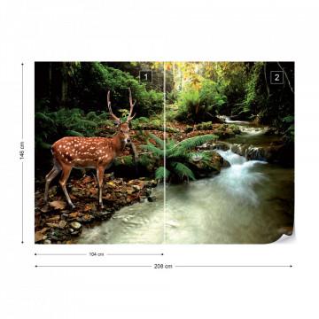 Deer In Forest Photo Wallpaper Wall Mural
