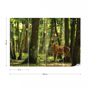 Deer In The Forest Nature Photo Wallpaper Wall Mural