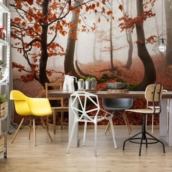 Fairytale Forest Photo Wallpaper Mural