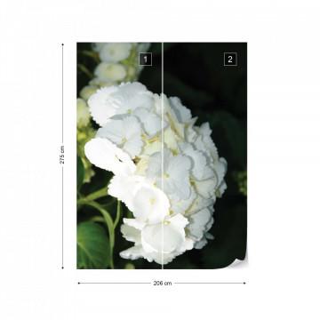 Flowers Hydrangea White Photo Wallpaper Wall Mural