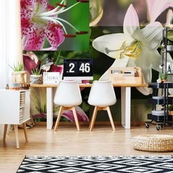 Flowers Lilies Photo Wallpaper Wall Mural