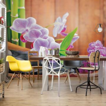 Flowers Orchids Zen Photo Wallpaper Wall Mural
